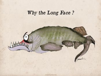 why the long face? - signed print